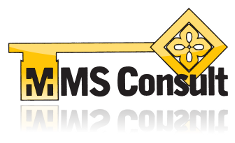 MMS Consult